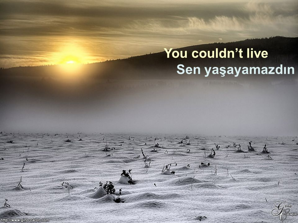 You couldn't live Sen yaşayamazdın