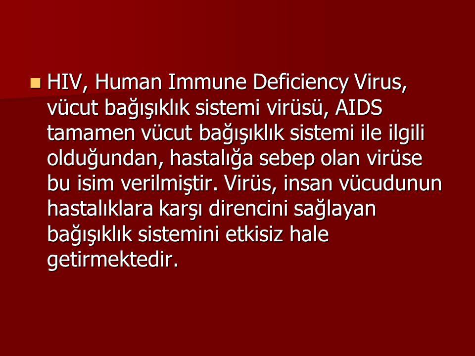 HIV, Human Immune Deficiency Virus, vücut bağışıklık sistemi virüsü, AIDS tamamen vücut bağışıklık sistemi ile ilgili olduğundan, hastalığa sebep olan virüse bu isim verilmiştir.