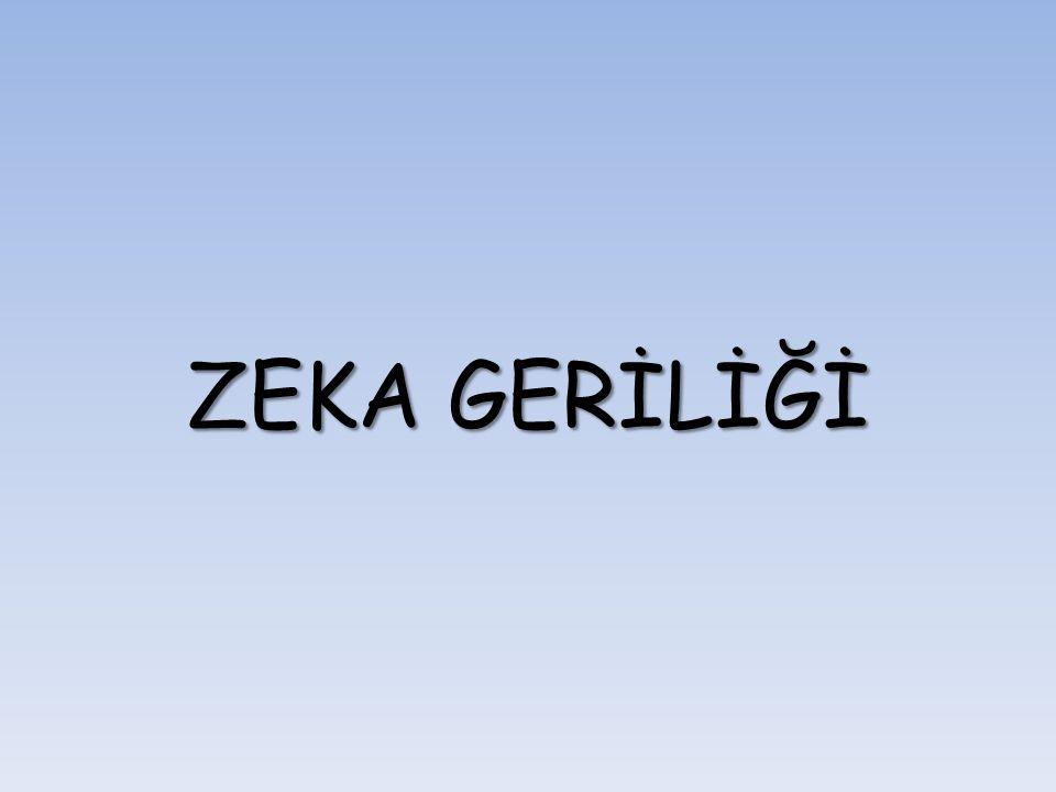 ZEKA GERİLİĞİ