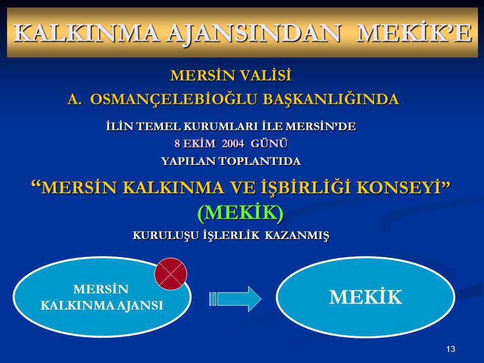 KALKINMA AJANSINDAN MEKİK'E