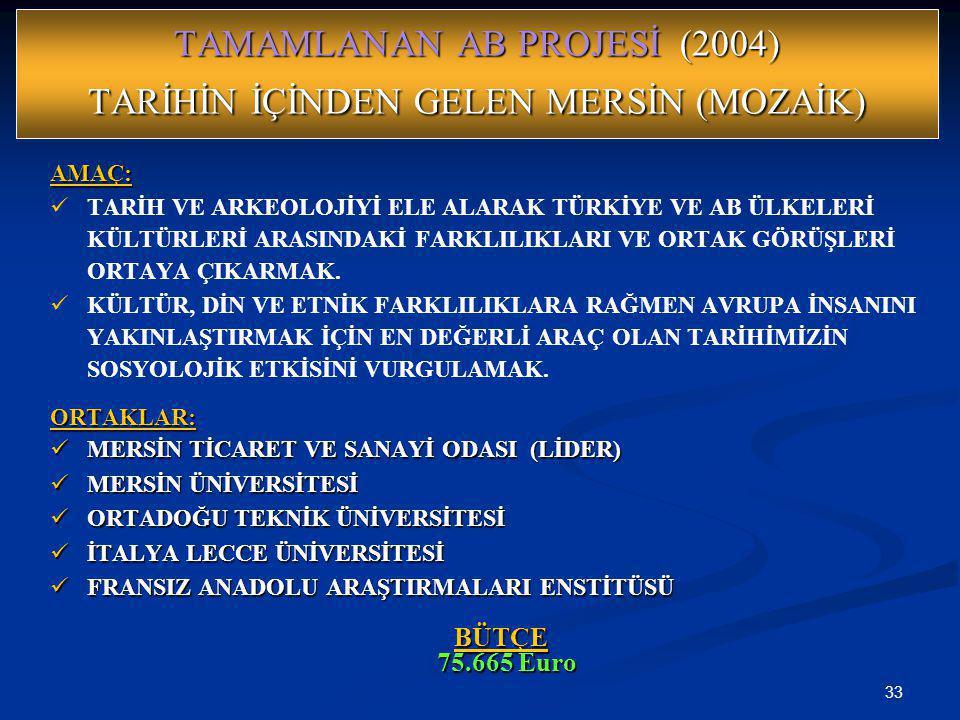 TAMAMLANAN AB PROJESİ (2004) TARİHİN İÇİNDEN GELEN MERSİN (MOZAİK)