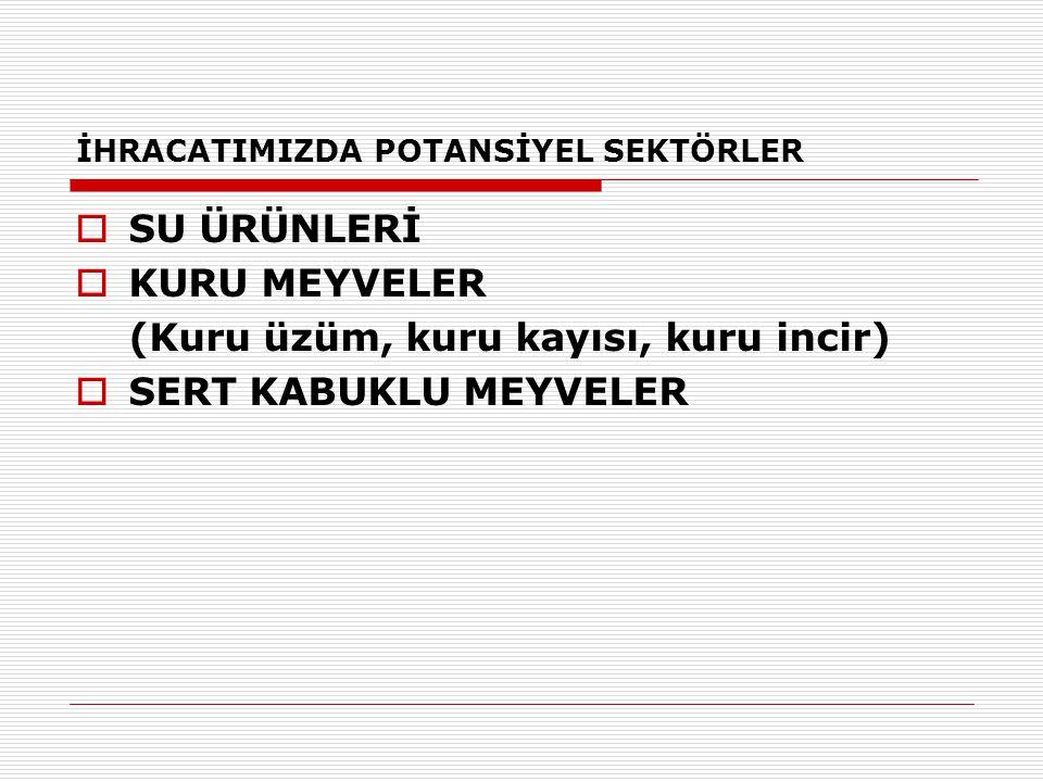 İHRACATIMIZDA POTANSİYEL SEKTÖRLER