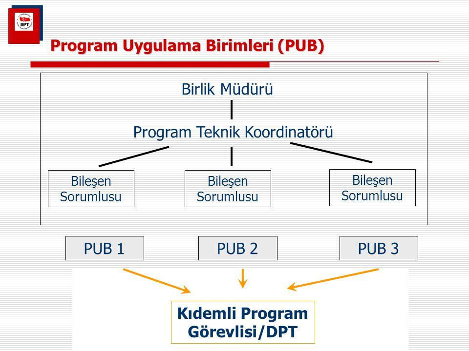 Program Uygulama Birimleri (PUB)