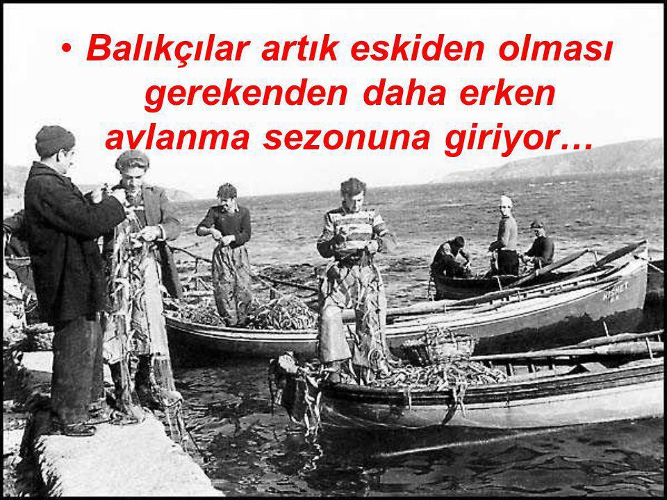 . Balıkçılar artık eskiden olması gerekenden daha erken avlanma sezonuna giriyor…