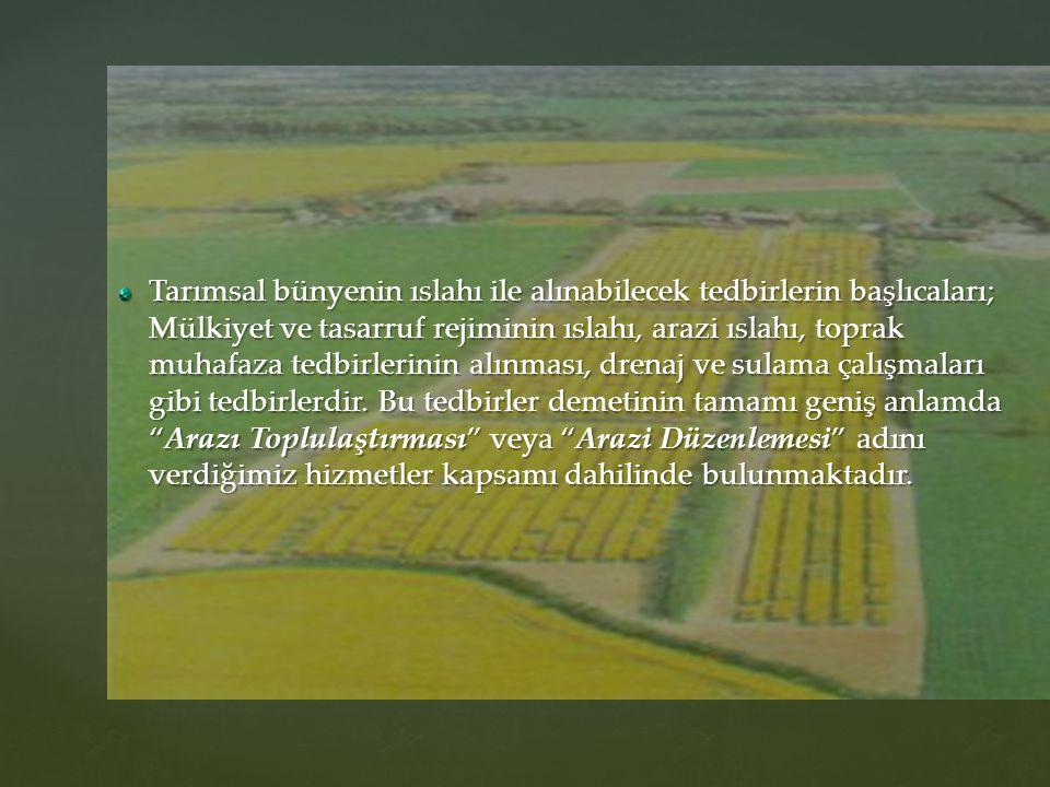Tarımsal bünyenin ıslahı ile alınabilecek tedbirlerin başlıcaları; Mülkiyet ve tasarruf rejiminin ıslahı, arazi ıslahı, toprak muhafaza tedbirlerinin alınması, drenaj ve sulama çalışmaları gibi tedbirlerdir.