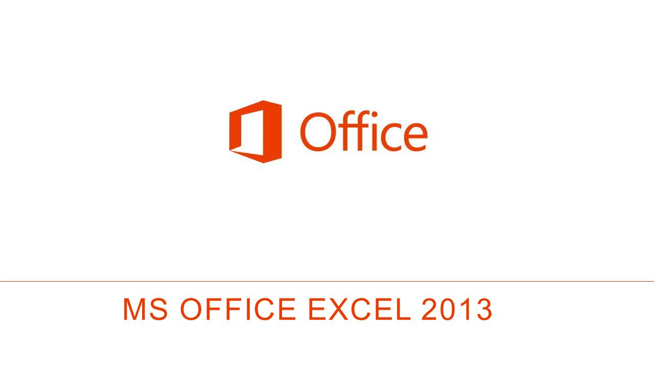 MS OFFICE EXCEL 2013