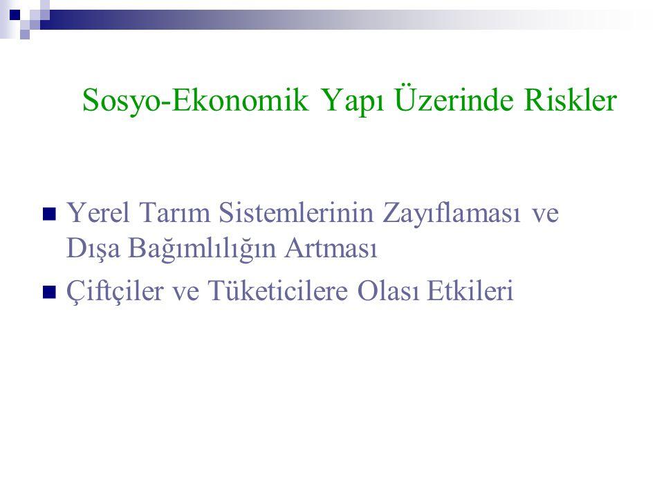 Sosyo-Ekonomik Yapı Üzerinde Riskler