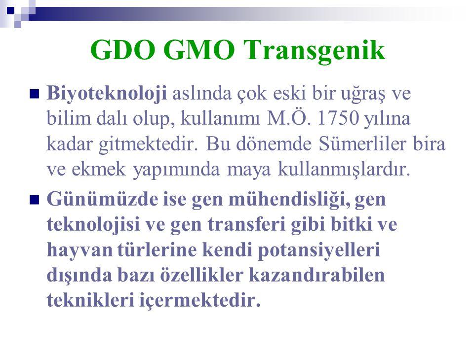 GDO GMO Transgenik