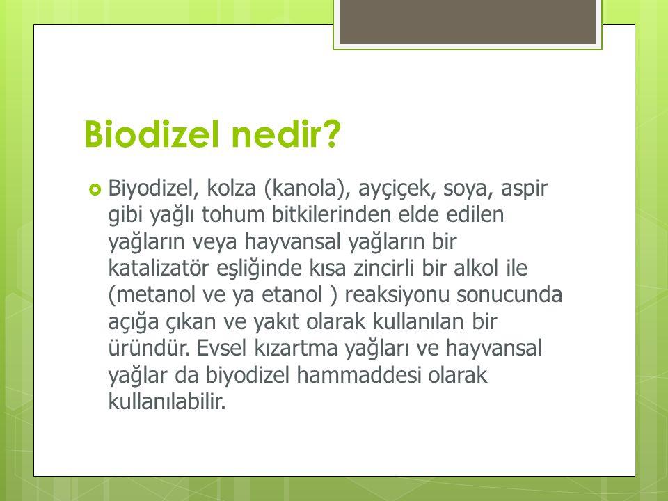 Biodizel nedir