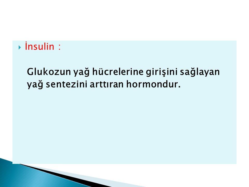 İnsulin : Glukozun yağ hücrelerine girişini sağlayan yağ sentezini arttıran hormondur.