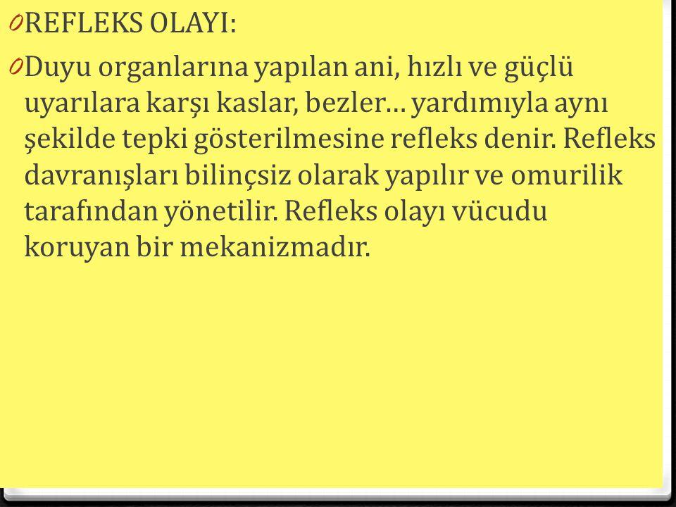 REFLEKS OLAYI: