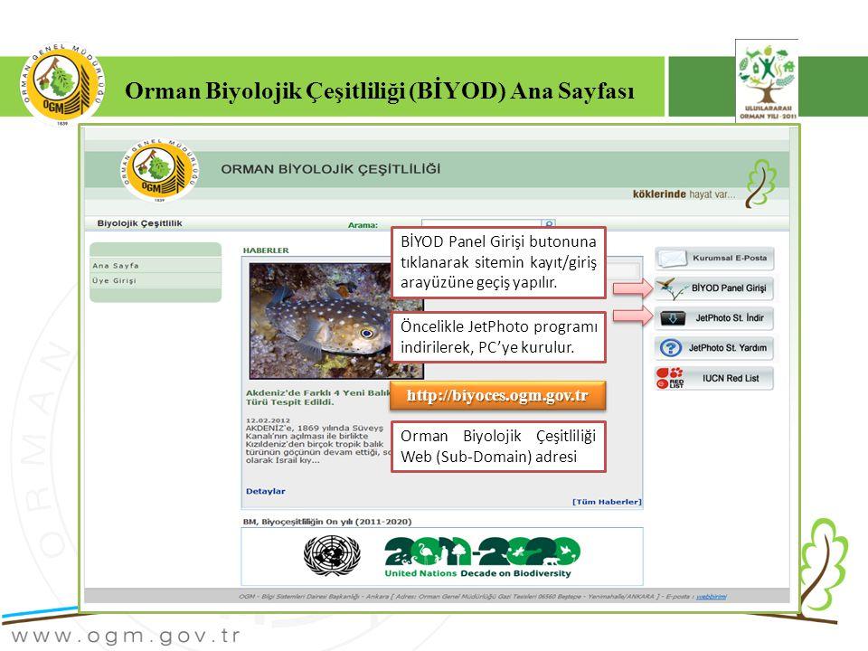 Orman Biyolojik Çeşitliliği (BİYOD) Ana Sayfası