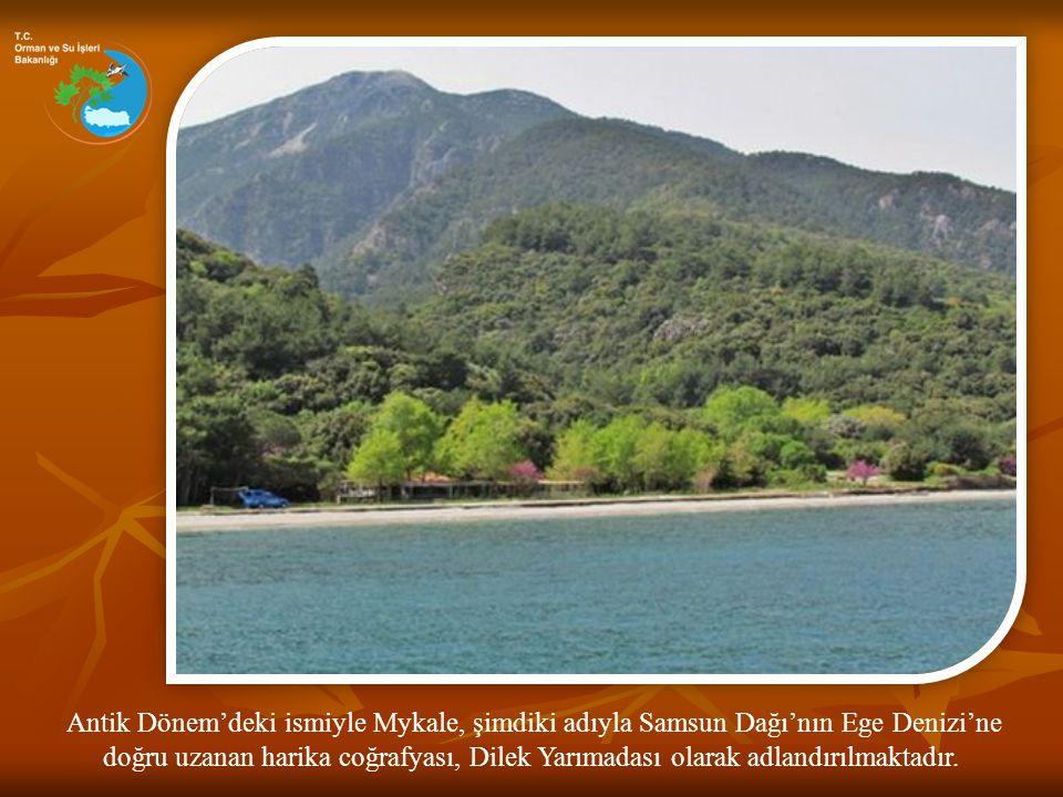 Antik Dönem'deki ismiyle Mykale, şimdiki adıyla Samsun Dağı'nın Ege Denizi'ne