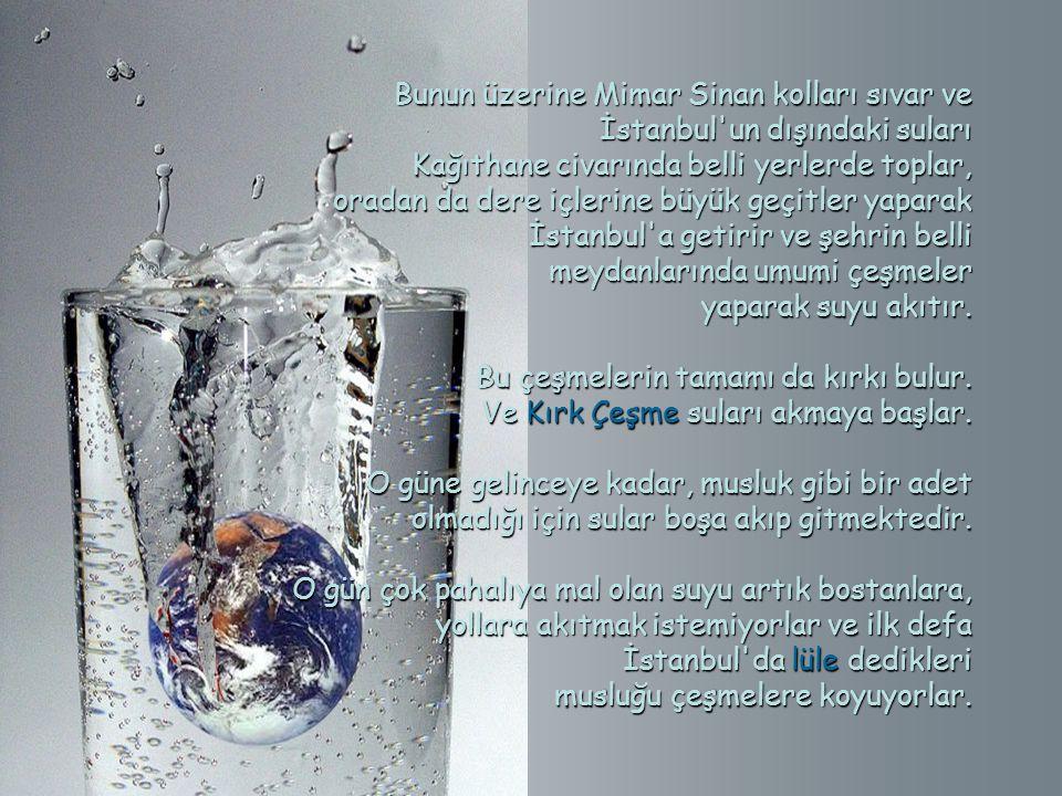 Bunun üzerine Mimar Sinan kolları sıvar ve İstanbul un dışındaki suları
