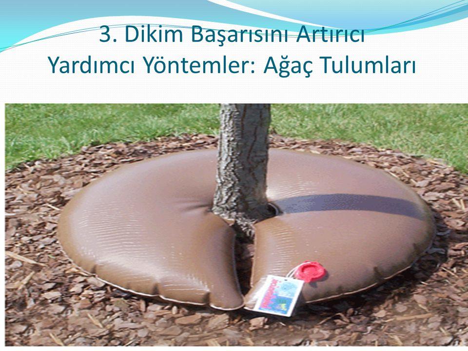 3. Dikim Başarısını Artırıcı Yardımcı Yöntemler: Ağaç Tulumları