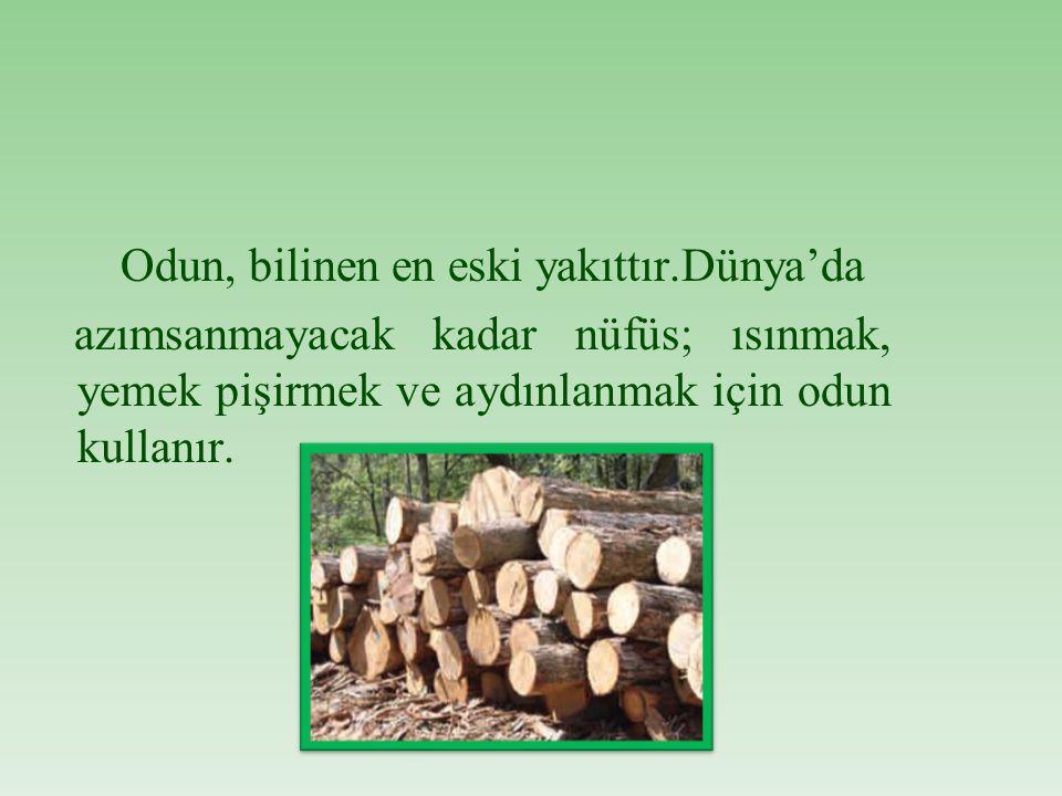Odun, bilinen en eski yakıttır
