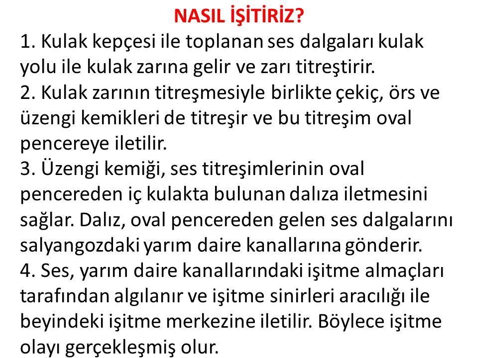 NASIL İŞİTİRİZ