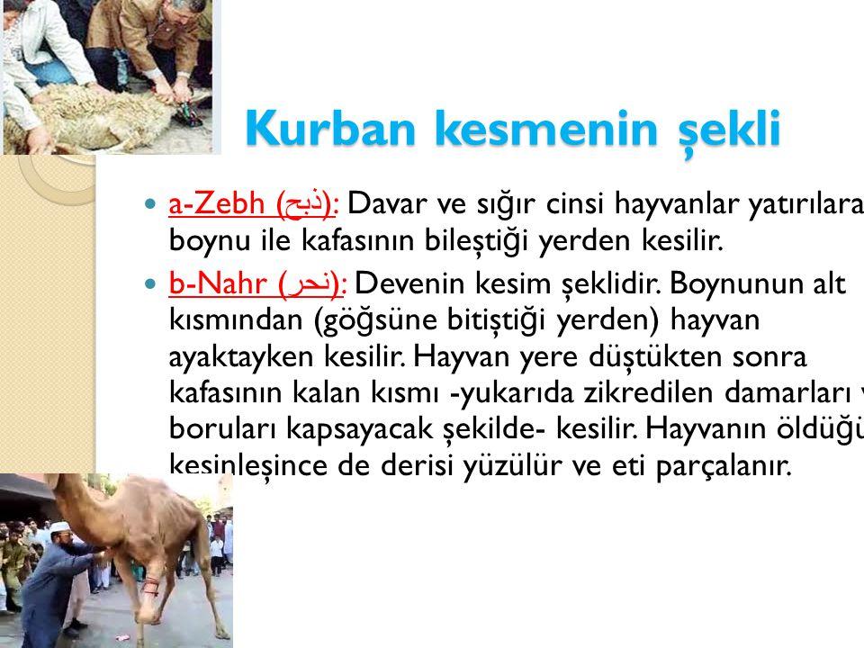 Kurban kesmenin şekli a-Zebh (ذبح): Davar ve sığır cinsi hayvanlar yatırılarak, boynu ile kafasının bileştiği yerden kesilir.