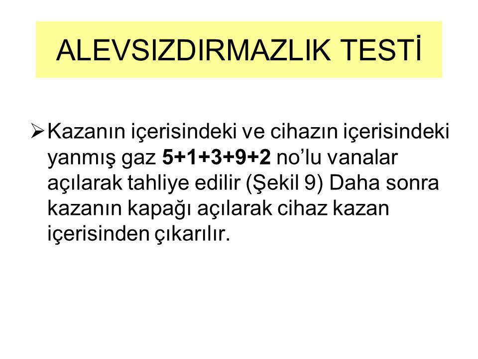 ALEVSIZDIRMAZLIK TESTİ