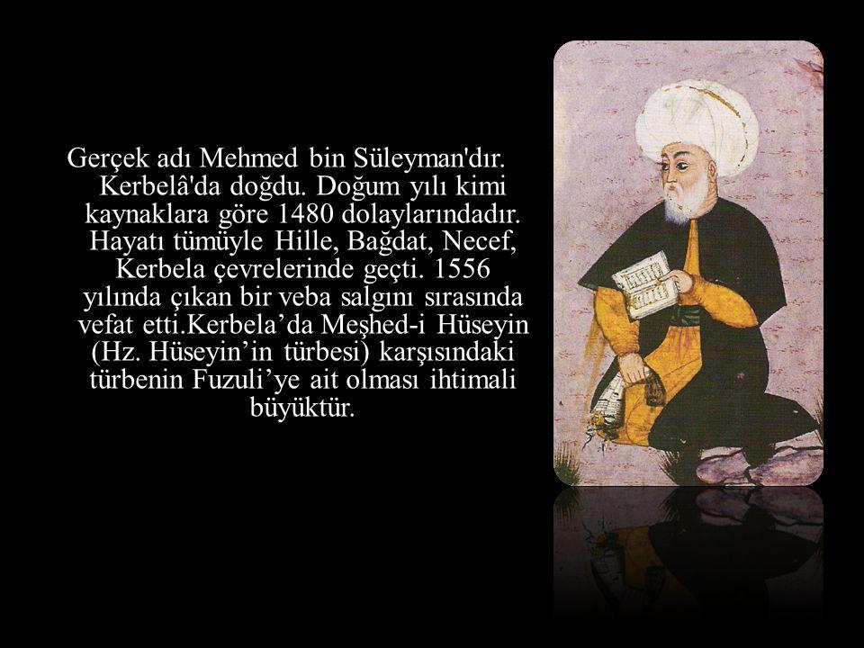 Gerçek adı Mehmed bin Süleyman dır. Kerbelâ da doğdu