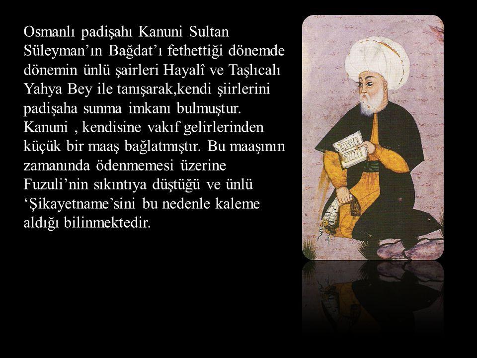 Osmanlı padişahı Kanuni Sultan Süleyman'ın Bağdat'ı fethettiği dönemde dönemin ünlü şairleri Hayalî ve Taşlıcalı Yahya Bey ile tanışarak,kendi şiirlerini padişaha sunma imkanı bulmuştur.