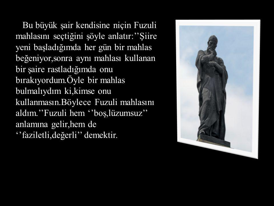 Bu büyük şair kendisine niçin Fuzuli mahlasını seçtiğini şöyle anlatır:''Şiire yeni başladığımda her gün bir mahlas beğeniyor,sonra aynı mahlası kullanan bir şaire rastladığımda onu bırakıyordum.Öyle bir mahlas bulmalıydım ki,kimse onu kullanmasın.Böylece Fuzuli mahlasını aldım.''Fuzuli hem ''boş,lüzumsuz'' anlamına gelir,hem de ''faziletli,değerli'' demektir.