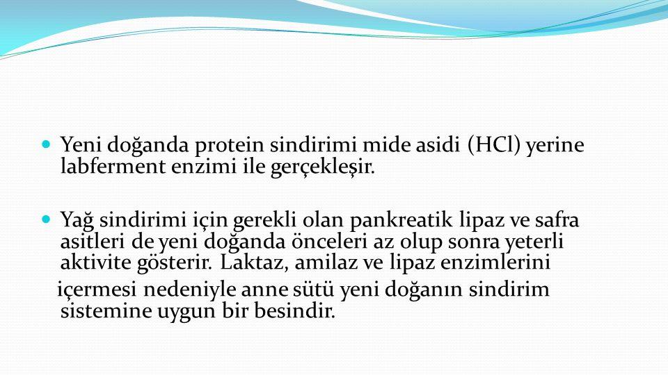 Yeni doğanda protein sindirimi mide asidi (HCl) yerine labferment enzimi ile gerçekleşir.