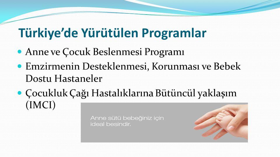 Türkiye'de Yürütülen Programlar