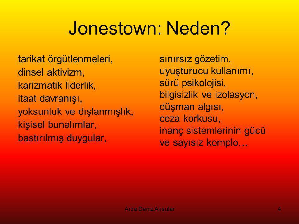 Jonestown: Neden sınırsız gözetim, tarikat örgütlenmeleri,