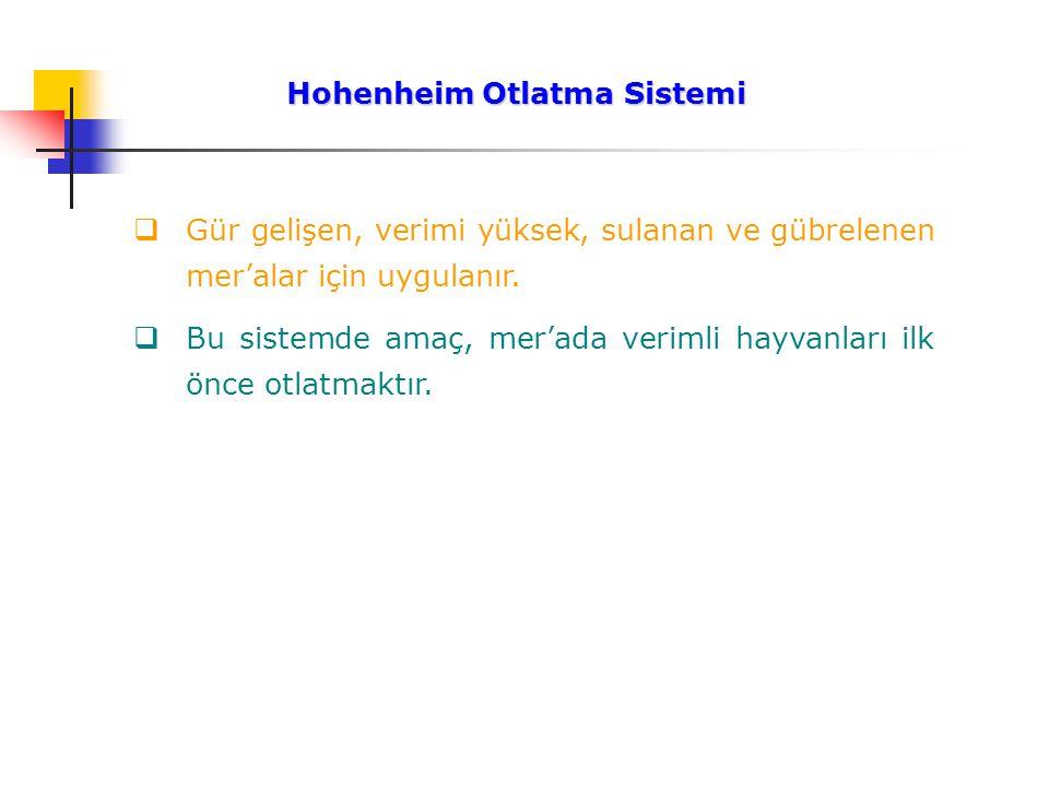Hohenheim Otlatma Sistemi