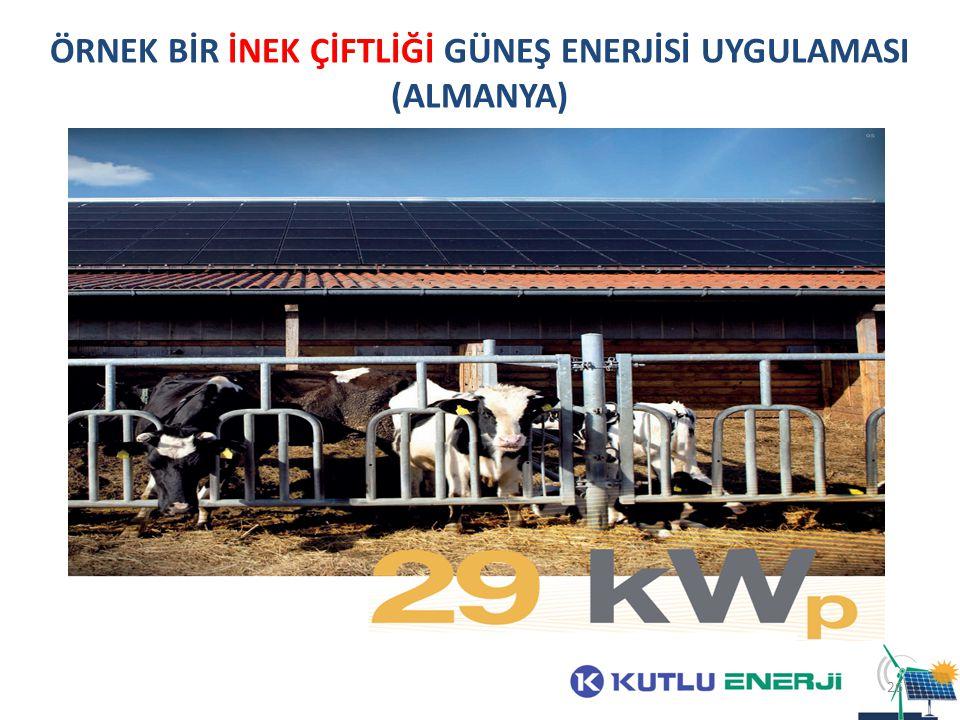 ÖRNEK BİR İNEK ÇİFTLİĞİ GÜNEŞ ENERJİSİ UYGULAMASI (ALMANYA)