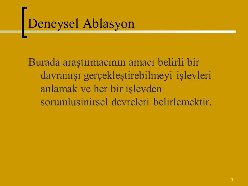 Deneysel Ablasyon
