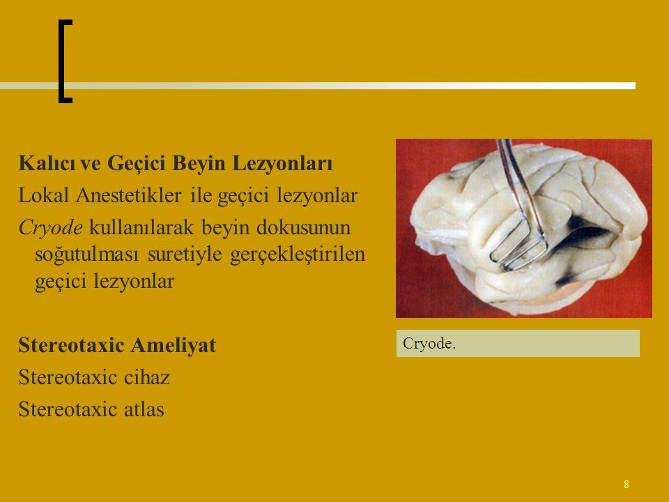 Kalıcı ve Geçici Beyin Lezyonları