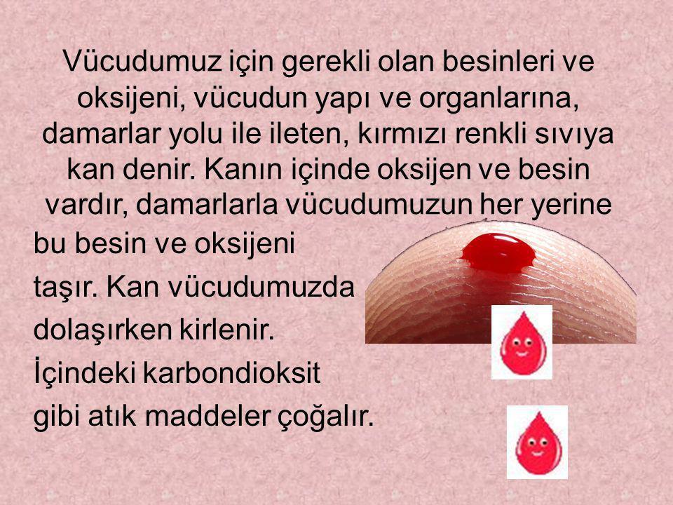 Vücudumuz için gerekli olan besinleri ve oksijeni, vücudun yapı ve organlarına, damarlar yolu ile ileten, kırmızı renkli sıvıya kan denir. Kanın içinde oksijen ve besin vardır, damarlarla vücudumuzun her yerine
