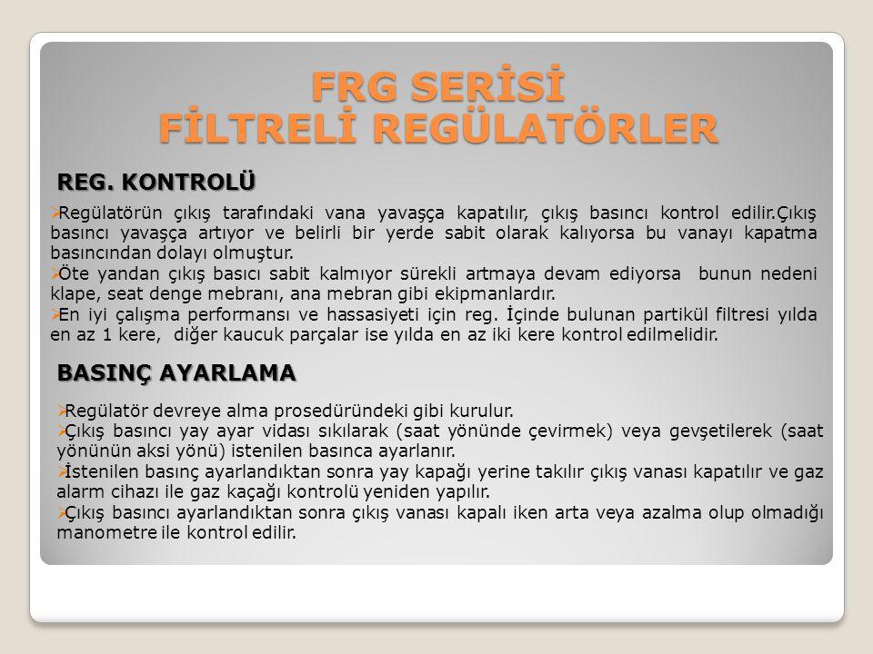 FRG SERİSİ FİLTRELİ REGÜLATÖRLER