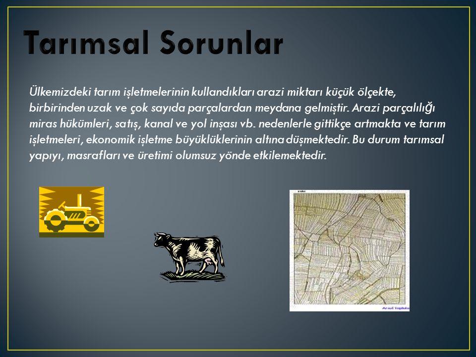 Tarımsal Sorunlar
