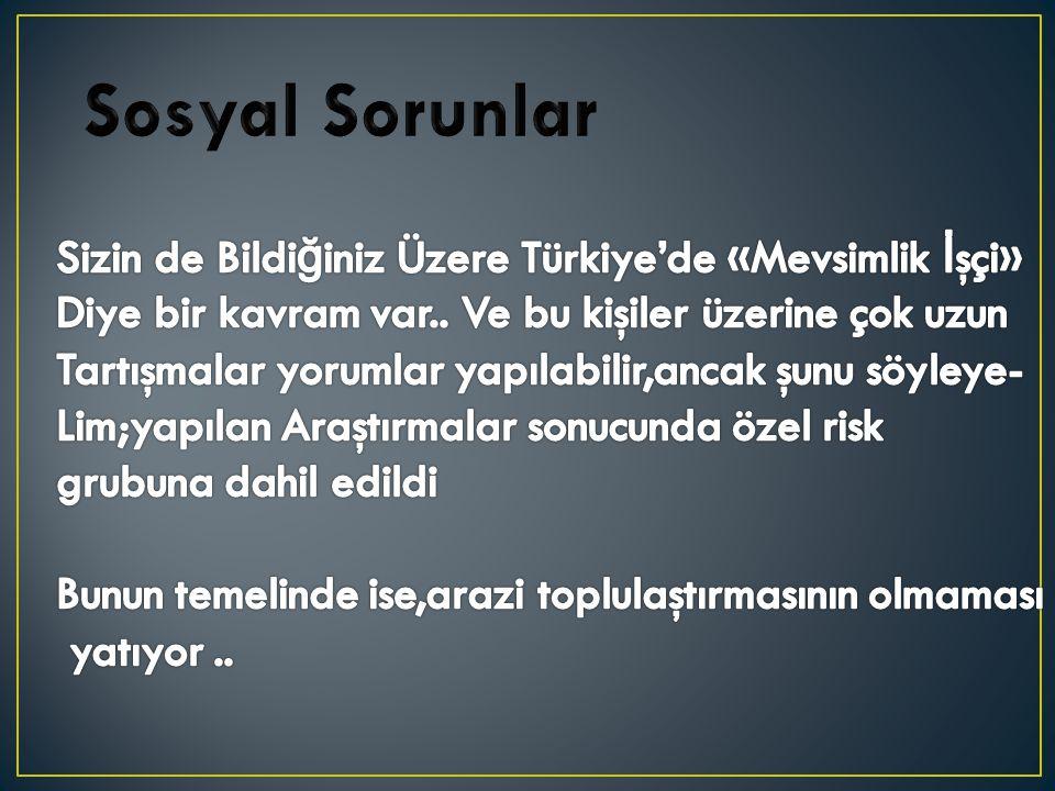 Sosyal Sorunlar Sizin de Bildiğiniz Üzere Türkiye'de «Mevsimlik İşçi»