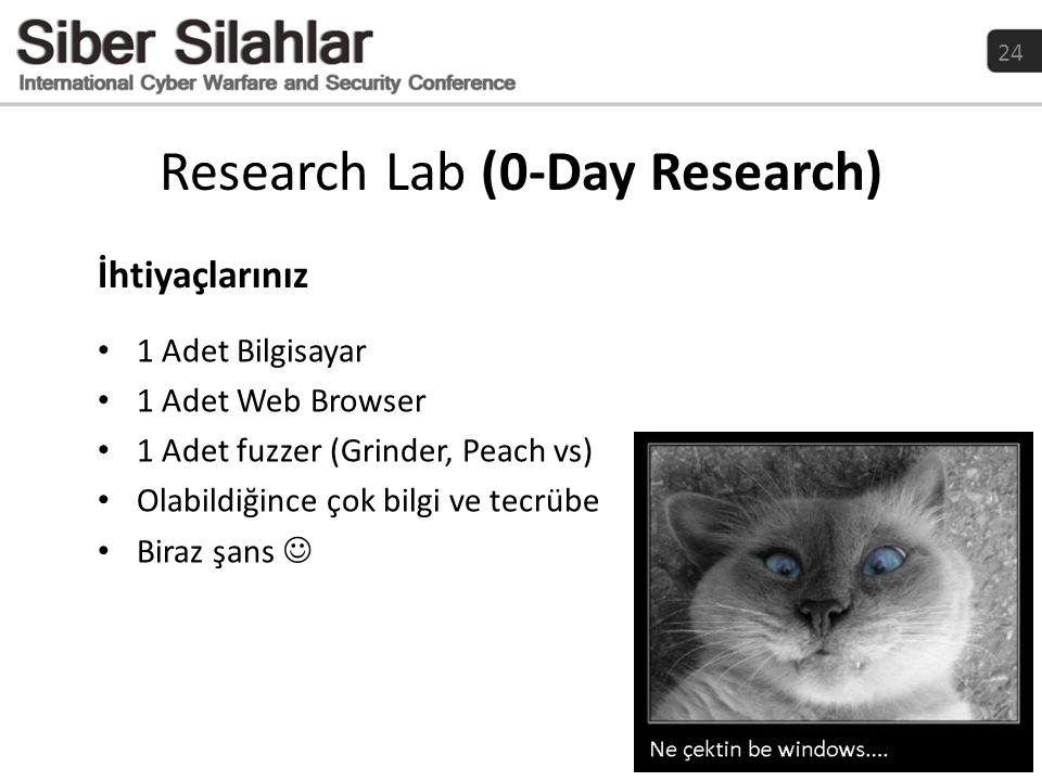 Research Lab (0-Day Research)