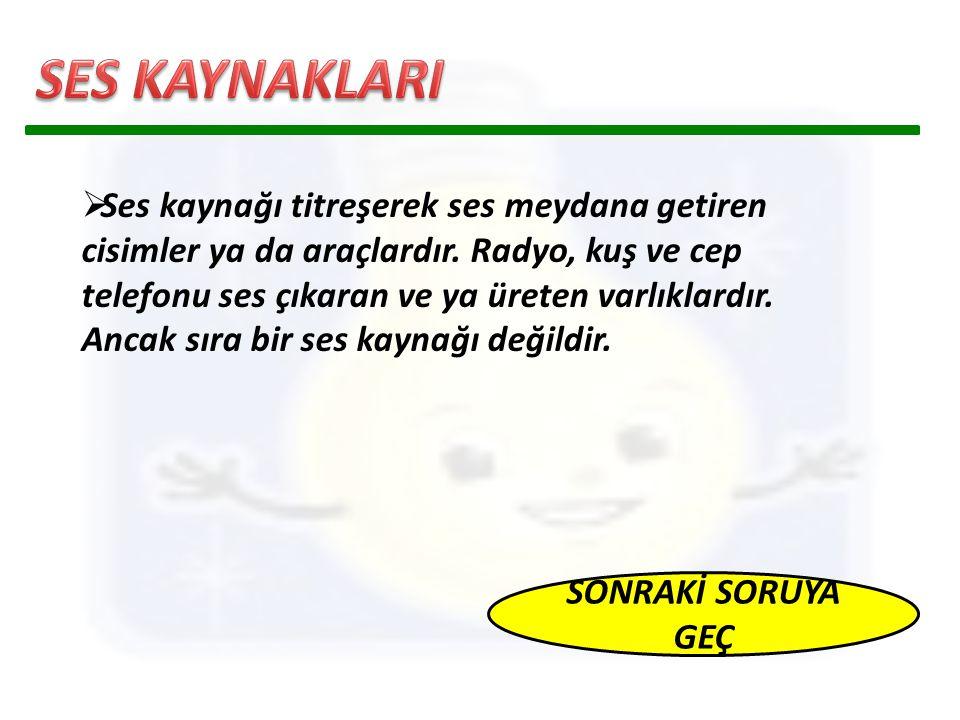 SES KAYNAKLARI