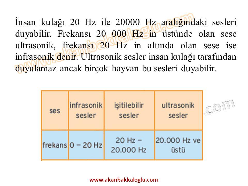 İnsan kulağı 20 Hz ile 20000 Hz aralığındaki sesleri duyabilir