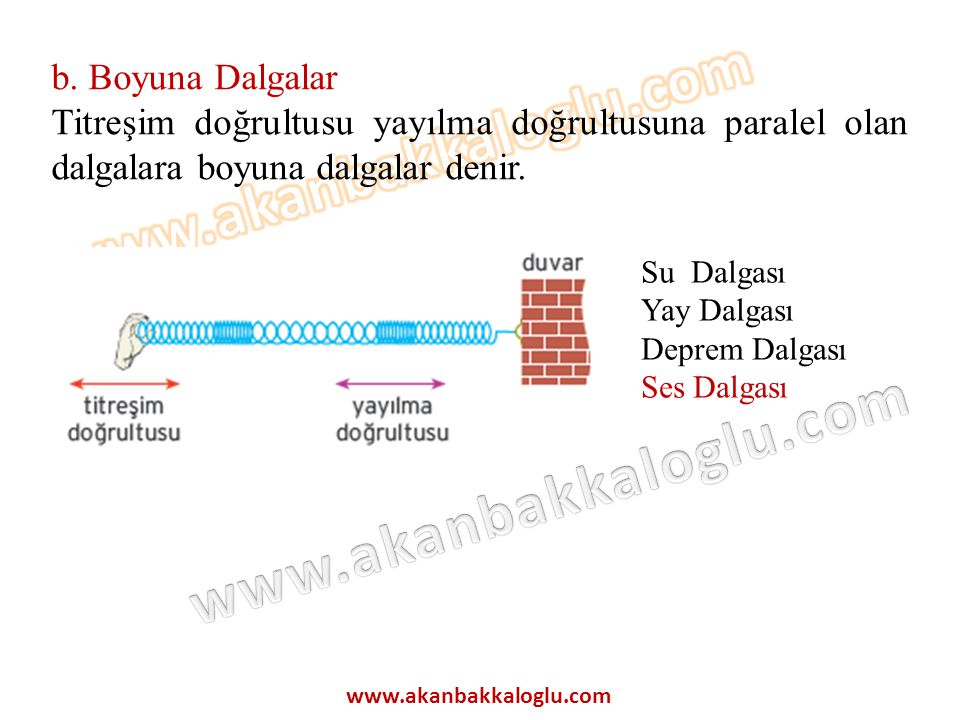 b. Boyuna Dalgalar Titreşim doğrultusu yayılma doğrultusuna paralel olan dalgalara boyuna dalgalar denir.