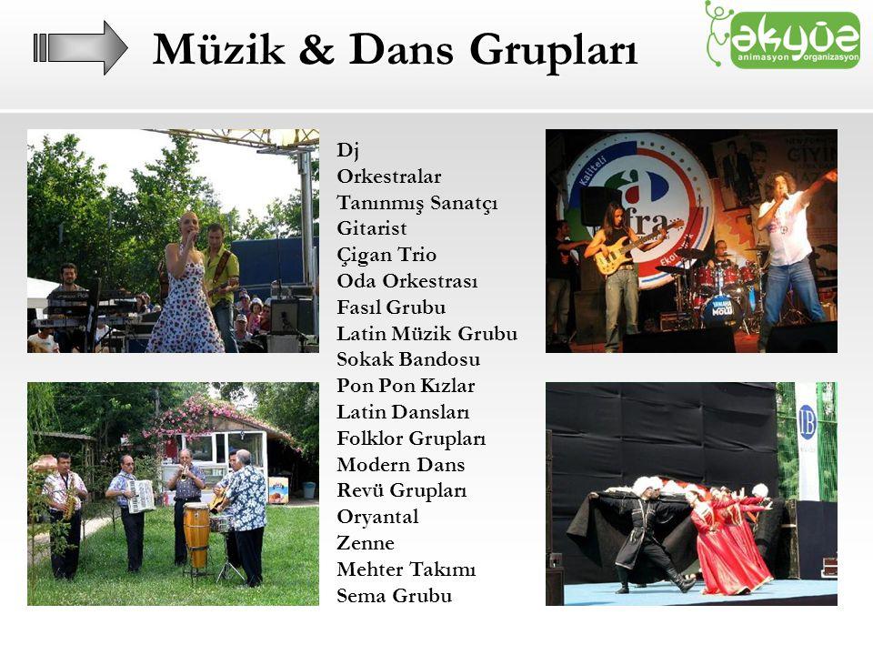 Müzik & Dans Grupları Dj Orkestralar Tanınmış Sanatçı Gitarist