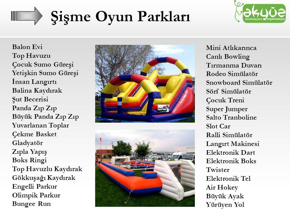 Şişme Oyun Parkları Balon Evi Mini Atlıkarınca Top Havuzu
