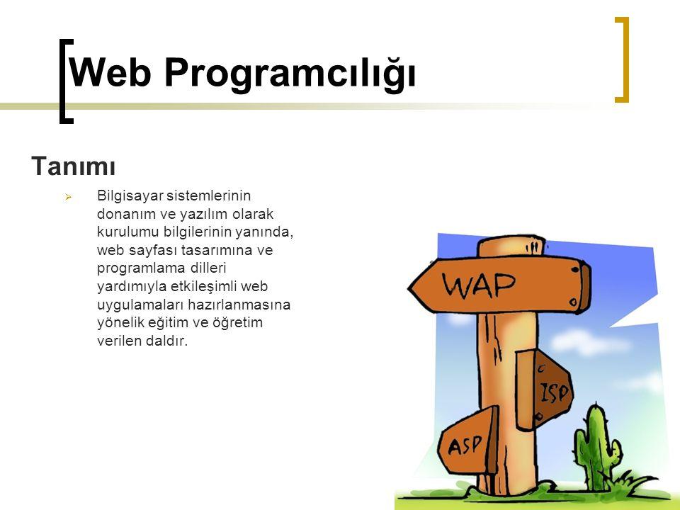 Web Programcılığı Tanımı