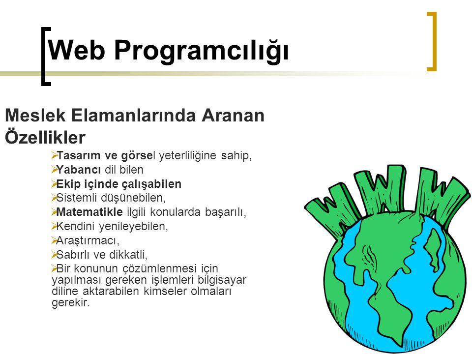 Web Programcılığı Meslek Elamanlarında Aranan Özellikler