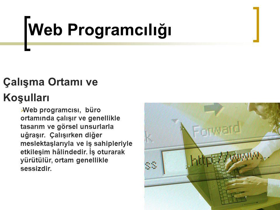 Web Programcılığı Çalışma Ortamı ve Koşulları