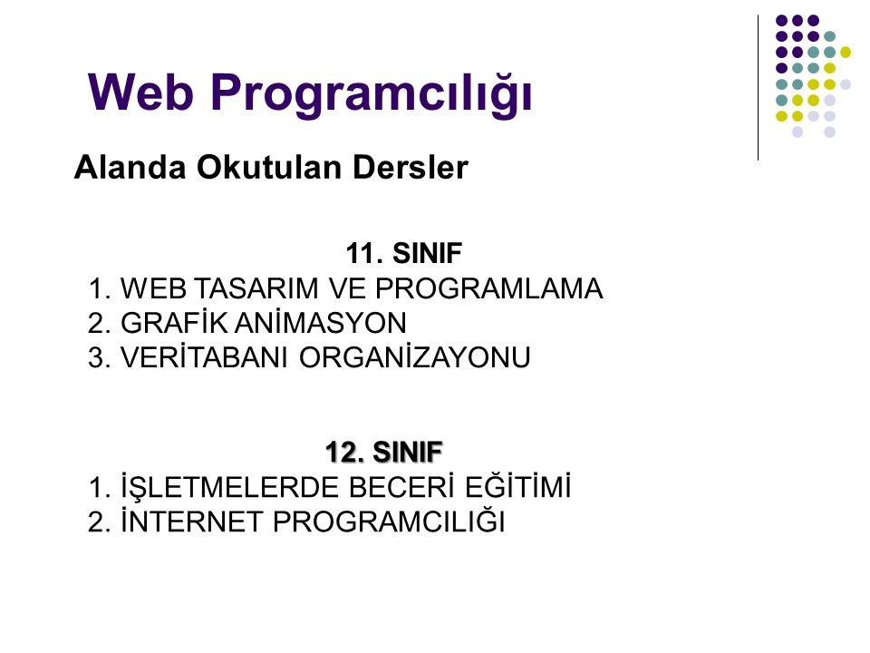 Web Programcılığı Alanda Okutulan Dersler 11. SINIF
