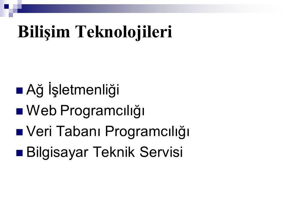 Bilişim Teknolojileri