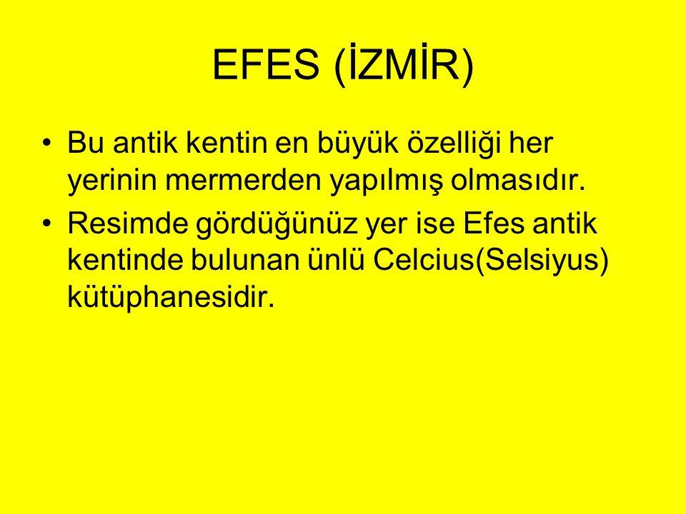 EFES (İZMİR) Bu antik kentin en büyük özelliği her yerinin mermerden yapılmış olmasıdır.