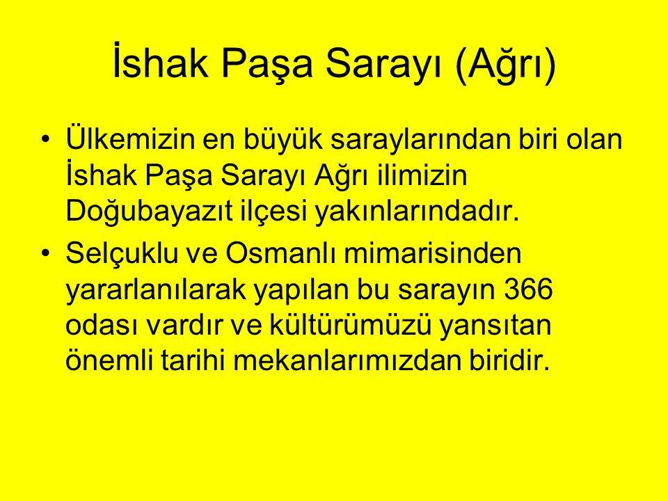 İshak Paşa Sarayı (Ağrı)